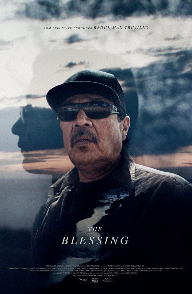 ExpiredThe Blessing (Bozeman Doc Series)